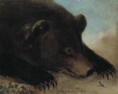 Portraits of a Grizzly Bear and Mouse, Life Size