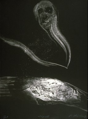 Untitled (Artist's proof III A) from Edgar Allan Poe portfolio