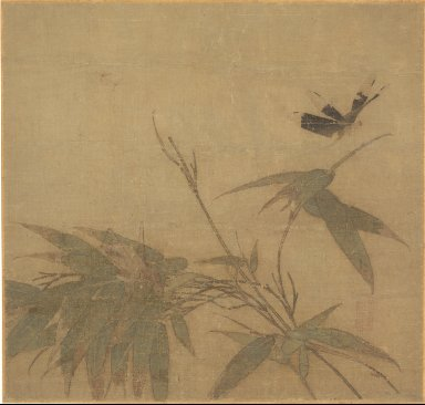 Insects and Bamboo
