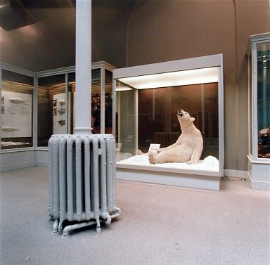 Polar Bear, Edinburough Royal Scottish Museum