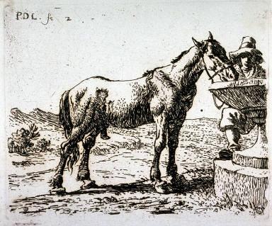 Le cheval buvant