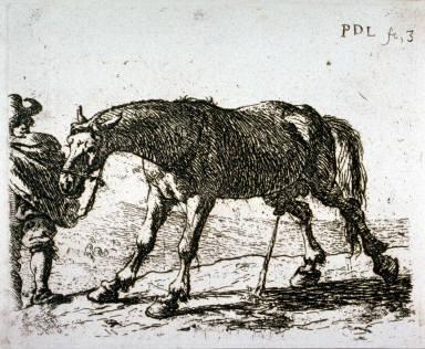 Le cheval qui pisse