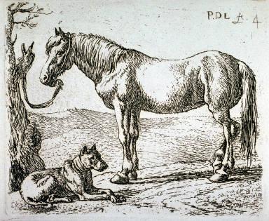 Le cheval et le chien