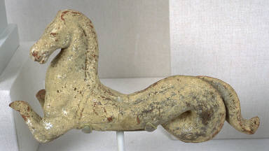 Hippocamp (seahorse)