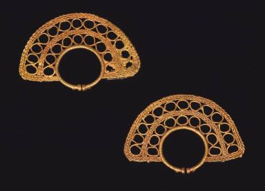 One pair of earrings