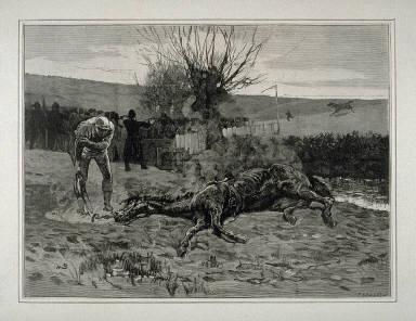 Steeple Chasing - The Last Leep - p.367 Harper's Weekly 25 April 1874