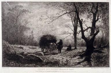 Chemin de Roches