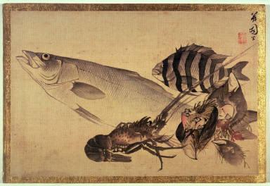Study of Fish and Shellfish