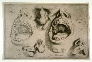 Studies of Nose and Mouth