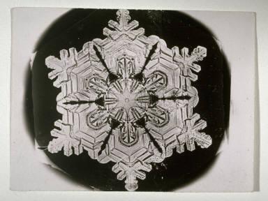 Snowflake, March 12, 1888, Jericho, Vermont