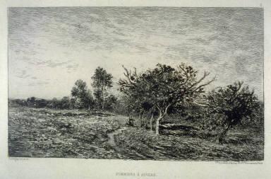 Pommiers à Auvers (Apple trees at Auvers)