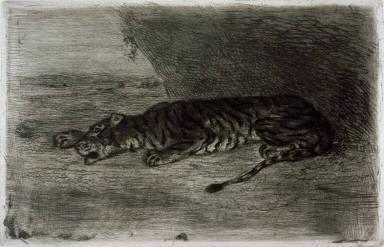 Tigre couche a l'entree de son antre