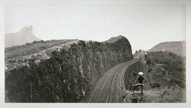 Man Looking at Railroad