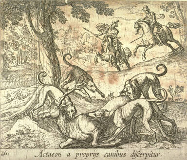Actaeon a propriÿs canibus discerpitur (Acteon Killed by his Dogs), pl. 26 from the series Ovids Metamorphoses
