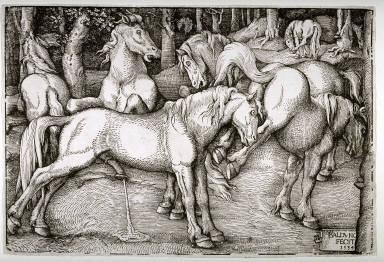 Group of Six Horses
