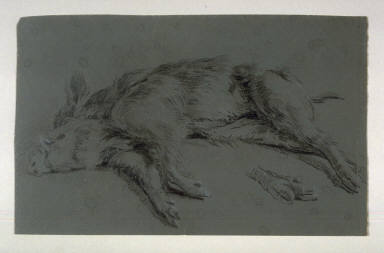 Recto: Dead Boar; Verso: Anatomical drawing of hind leg, with notations