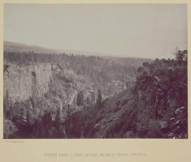 North Fork Canon, Sierra Blanca Creek, Arizona.
