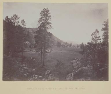 Cooley's Park, Sierra Blanca Range, Arizona.