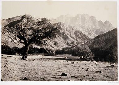 Mount Serbal, From the Wadee Feyran