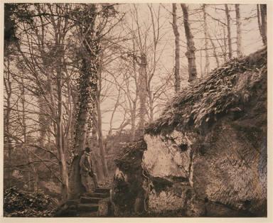 Near Winterdyne on the Severn