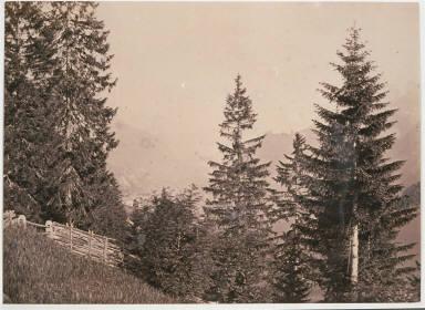 Monte Curta from Buchenstein