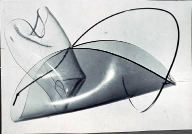 Plexiglas and Rhodo... Sculpture