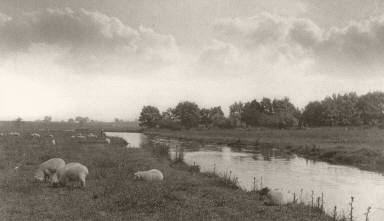 [On the River Bure, Life and Landscape on the Norfolk Broads]