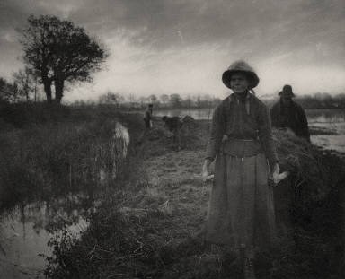 [Poling the Marsh Hay, Life and Landscape on the Norfolk Broads]