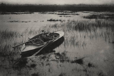 [Gunner Working Up to Fowl, Life and Landscape on the Norfolk Broads]