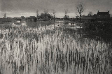 [A Rushy Shore, Life and Landscape on the Norfolk Broads]
