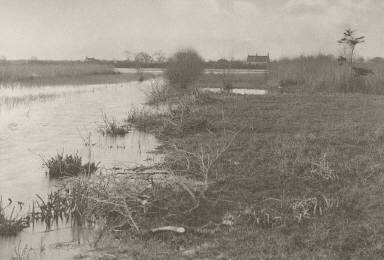 [An Autumn Morning, Life and Landscape on the Norfolk Broads]