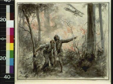 Men in woods watching plane