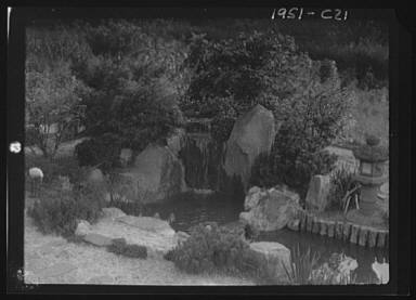 Garden with a Japanese waterfall and a stone lantern, possibly belonging to A.W. Bahr