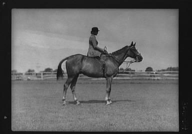 Schey, Theresa, Miss, on horse