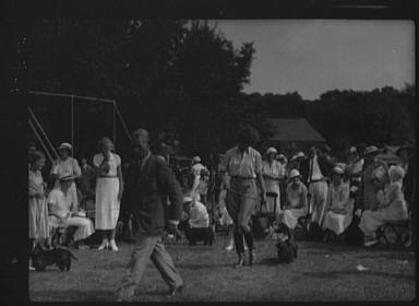 Dog show, Easthampton, Long Island
