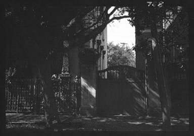 Gate between two buildings, New Orleans, portrait photograph