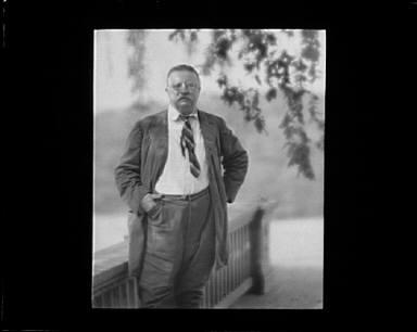 Portrait photograph of Theodore Roosevelt
