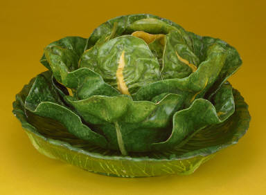 Cabbage tureen, cover and stand