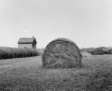 Haybales -- Hwy 8, Wis.