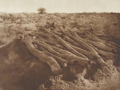 Pima Burial Grounds