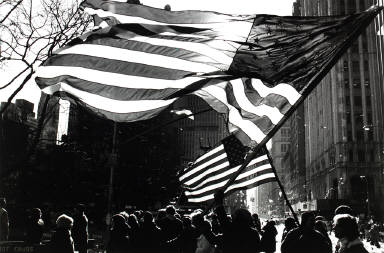 American Flags, Freed Iranian Hostage Celebration, New York City, January 30, 1981