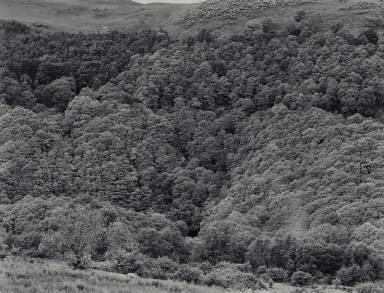 Near Keswick, Cumbria, England
