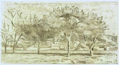 Landscape at Pontoise (Apple Trees)