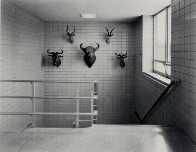 Corridor, Biology Department, State University of New York, Potsdam