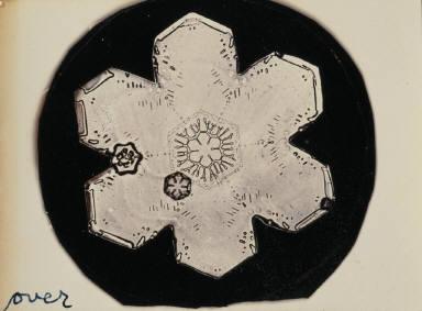 Snow Crystal No. 3837