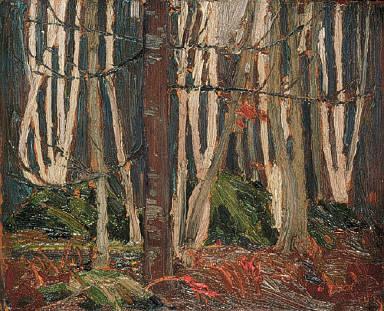 Birch Woods in Autumn