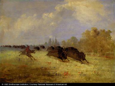 Caddo Indians Chasing Buffalo, Cross Timbers, Texas