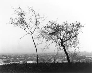 On Signal Hill Overlooking Long Beach, California