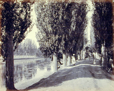 Kashmir and Scinde Valley, Avenue by the Dhul Canal