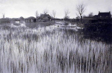 A Rushy Shore. Plate XXXV from Life and Landscape on the Norfolk Broads.